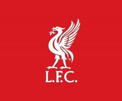 Liverpool FC Liver Bird Logo - Portfolio Image