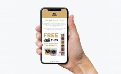 Marketing Design - Mailchimp email design