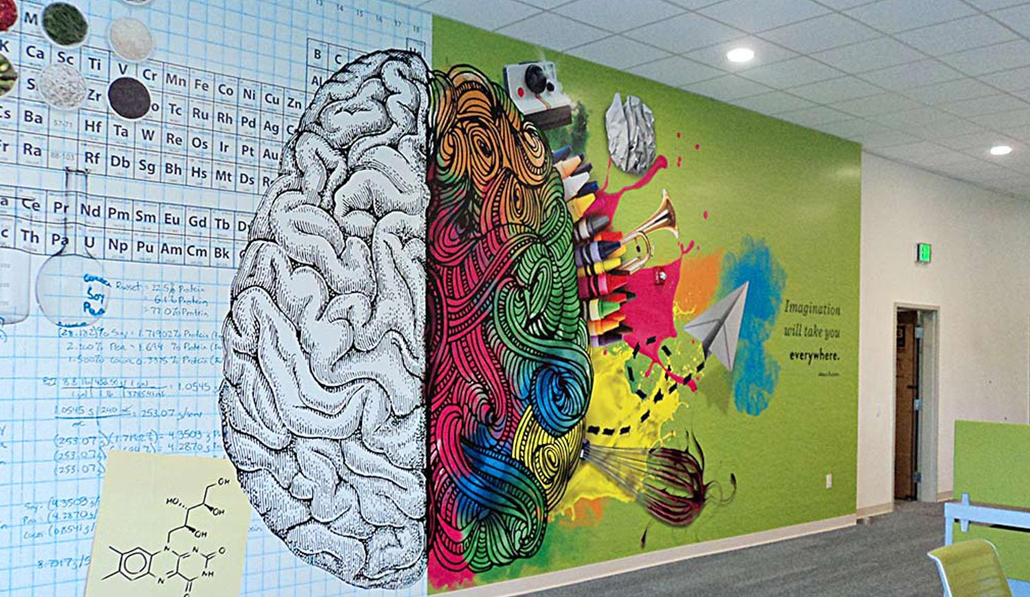 Educational Wall Prints for Schools - Wall Mural in College