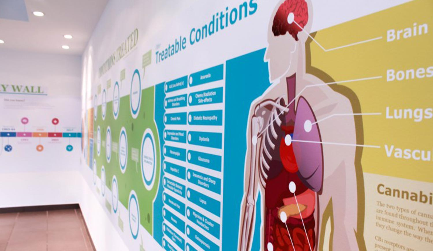 Hospital Wall Prints - Wall graphics for Medical centres
